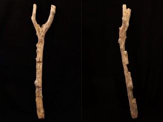 Berber old tree trunk...
