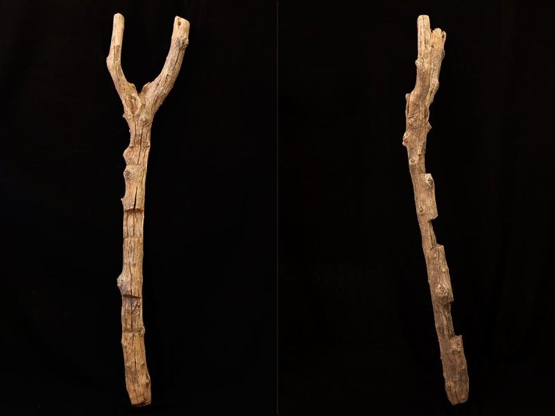 Berber old tree trunk granary ladder (Agadir)